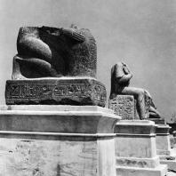 Александрия Египетская. Фрагменты гранитных статуй Рамсеса II и Псамметиха, установленные вблизи так наз. колонны Помпея