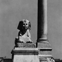 Александрия Египетская. Гранитный сфинкс, установленный вблизи так наз. колонны Помпея. Вид с запада