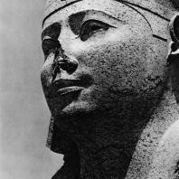Александрия Египетская. Гранитная голова сфинкса