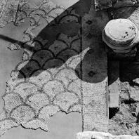 Александрия Египетская. Ком эль-Дикка. Фрагмент мозаики в западном помещении театра