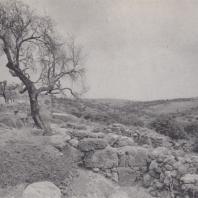 Загородный дом в Като Закро, Крит. Фото: Анджей Дзевановский