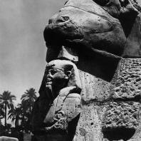 Карнак. Египет. Фрагмент одной из статуй северного ряда сфинксов Рамсеса II перед 1 пилоном храма Амона. Фотограф: Анджей Дзевановский