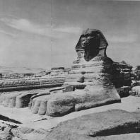 Сфинкс. Гизе. Египет. Фото: Анджей Дзевановский