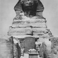 Сфинкс в Гизе. Между ногами сфинкса - вотивная стела фараона Тотмеса IV. Фото: Анджей Дзевановский